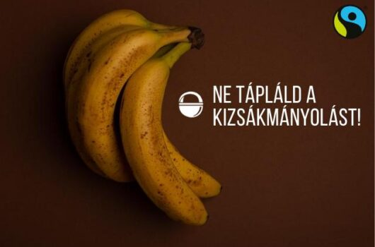 fairtrade banán