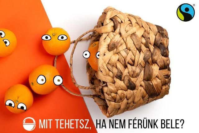 fairtrade narancs