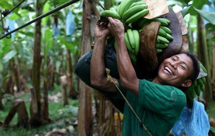 méltányos kereskedelem Fairtrade fair trade