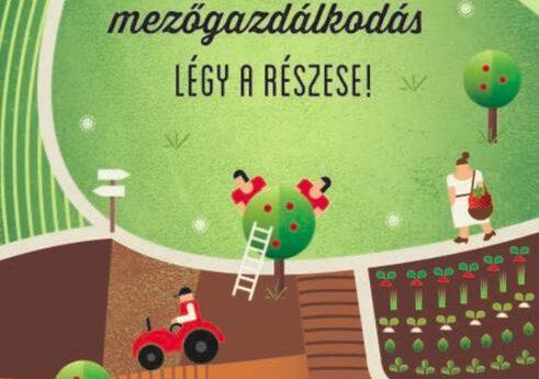 https://tudatosvasarlo.hu/wp-content/uploads/1-Legy-a-reszese-2013.pdf