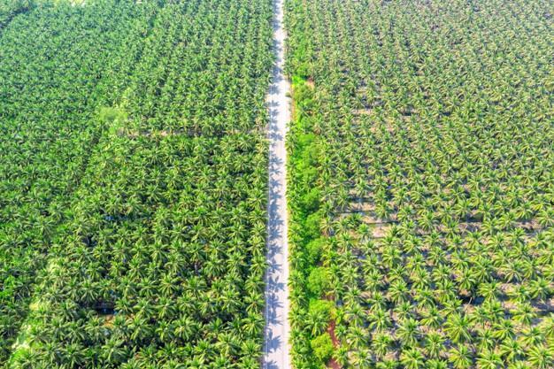 élelmiszeripar klímaváltozás