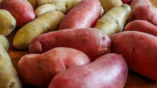 mi fán terem burgonya krumpli