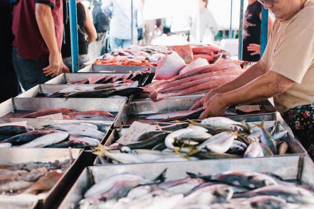 hal túlhalászat