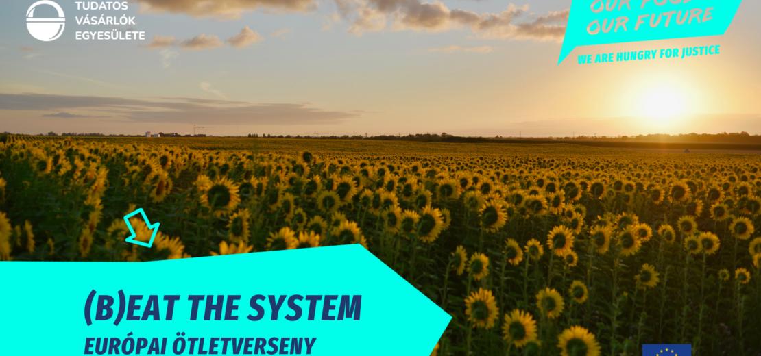 Beat the system! ofof pályázat fiataloknak