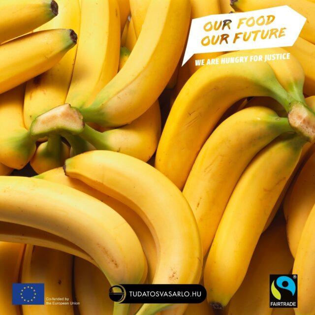 Az alma után itthon a második legnépszerűbb gyümölcs a banán. Olcsó, egészséges, de útja az asztalunkig igazságtalansággal, kizsákmányolással és környezetpusztítással van kikövezve.   Összeszedtünk mindent amit a banántermelésről és kereskedelemről tudni lehet, és azt hogyan változtathatsz ezen.    🍌 Röviden?Válaszd a fairtrade banánt! ☕ Bővebben? Olvasd el a cikket!   Link a bioban.  ⚓ Kövesd a #GoEAThical és az #OurFoodOurFuture hashtaget és értesülhetsz a kampányunk következő állomásairól.   #tudatosvásárló #tudatosvasarlo #OFOF #DEARProgramme #tudatos #fairtrade #klímabarátkonyha #klímabaráttányér #foodie #táplálkozás #tudatoséletmód  #egészség #egészségeséletmód #életmód #életmódváltás  #mutimiteszel #mik_gasztro_fitt #mutimiteszel_fitt #veggies #gasztro #zöldség #mutimiteszel_mentes #meltanyoskereskedelem #hulladekmentes #fenntartható #környezetvédelem #fenntarthatóság