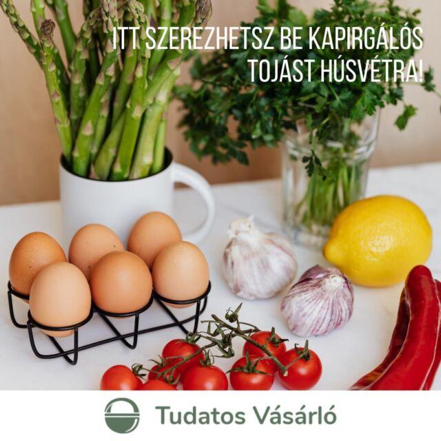 #TudatosHúsvét 🐰Tényleg jobb választás a kapirgálós tyúk tojása, mint a ketrecesé? Szerintünk a válasz egyértelműen IGEN, és cikkünkben (link a bióban) szakértők segítségével azt is elmondjuk, hogy miért.  🥚A húsvéti ünnepekre készülve pedig összegyűjtöttük, hol tudsz Budapesten venni és rendelni kapirgálós vagy akár épp bio tojást (egyes áruházakon túl)! - piacok, a teljesség igénye nélkül: @pancs_placc, @biokulturaokopiac, @romaipartipiac, @infoparktermeloipiac, Budaörsi Gazdapiac - @nepazarolj - @szatyorbolt - @nekedterem.hu - @farm2fork_boldizsar  - Falufood.hu - YouTyúk  Nálatok melyik tojásétel a húsvéti asztal kötelező eleme?  #tojás #húsvét #tudatosvasarlo #tudatosfogyasztas #termeloi #hazai #piac