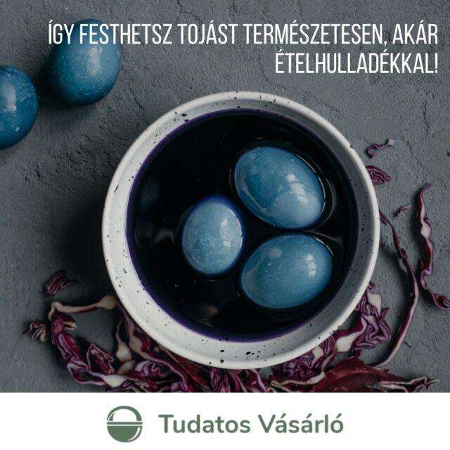 #TudatosHúsvét 🐰Itt a húsvét, indulhat a tojásfestés!🌈🥚 Leteszteltük, hogy a konyhában fellelhető természetes alapanyagokkal miként lehet megfesteni a tojásokat. Ha kíváncsi vagy, milyen végeredményt kaptunk a kurkumával, vöröshagymával és kamillával? Kattints a linkre a bióban és inspirálódj! 🖌️   #NKA #tudatosvasarlo #husvet #tojas #tojasfestes #ételmaradék #diy #ételhulladék