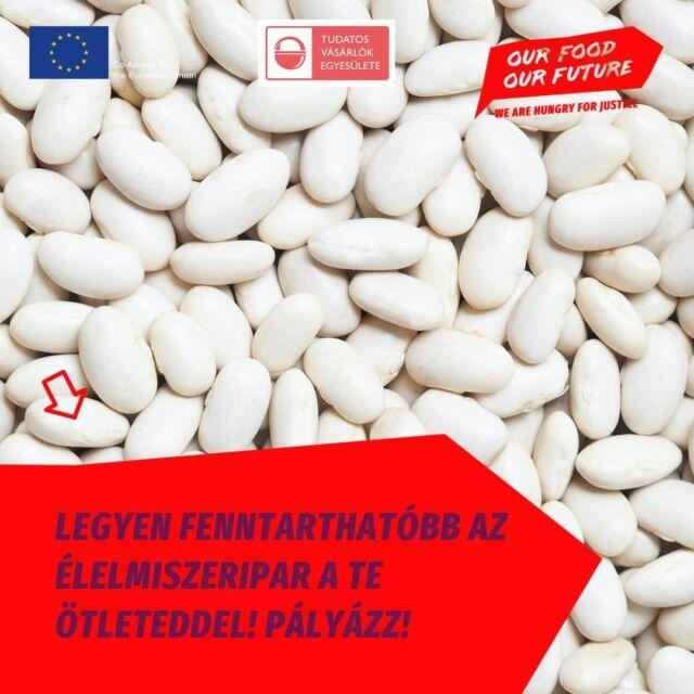 📣A (b)EAT the System nemzetközi ötletversenyen bármilyen innovatív és kreatív akcióval, kampánnyal pályázhatsz online és offline kategóriában, akár egyedül vagy csapatban! A lényeg, hogy az ötlet valamilyen módon a fenntarthatóbb élelmiszeripar 🍎🥕♻️ felé mutasson. Az egyes kategóriák három legjobb ötletét egy európai online szavazási folyamat során választják ki, amelyben bárki jogosult szavazni. A díjak odaítélésén után a kampánycsapat a győztesekkel együtt fogja megvalósítani az ötletüket az Our Food. Our Future kampány keretén belül.   🖋️Pályázni 18-35 év közöttiek tudnak angol nyelvű anyagukkal augusztus 31-ig. Részletek a bióban!  #OurFoodOurFuture #GoEAThical #OFOF #DEARProgramme #méltányoskereskedelem #fairtrade #klímabarátkonyha #klímabaráttányér  #foodie #táplálkozás #tudatoséletmód #egészség  #egészségeséletmód #életmód #életmódváltás  #mutimiteszel #mik_gasztro_fitt #mutimiteszel_fitt #veggies #gasztro #zöldség #mutimiteszel_mentes  #meltanyoskereskedelem #hulladekmentes #fenntartható #környezetvédelem #fenntarthatóság