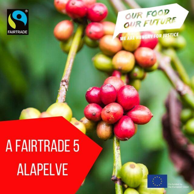 """💚Ma van a Fairtrade Világnapja!💚 Eredetileg 1989-ben jött létre Hollandiában a Méltányos Kereskedelem Világszervezete, működésének célját pedig így fogalmazza meg: """"a cél egy olyan transzparens kereskedelmi kapcsolat, amely párbeszéden és megbecsülésen alapul."""" 🌎A fairtrade jó a gazdáknak, a fogyasztóknak és a bolgyónak egyaránt, ugyanis a Föld egészségét csak úgy érhetjük el, ha nem szipolyozzuk ki embertársainkat. A rendszer egyik előnye a Fairtrade felár, más néven Fairtrade prémium, amiből a gazdák a közösségeik fejlesztése mellett a környezetbarát gazdálkodáshoz szükséges és a kílmaváltozás hatásira reagáló beruházásokat is ebből finanszírozzák.  👩🌾Jelenleg nők termelik meg a Föld élelmiszerkészletének 60-80%-át, ennek ellenére az elmúlt 50 évben a szegénységben élő nők száma 1,5-szeresére nőtt, a fairtrade rendszer azonban nekik is méltányos megélhetést biztosít. Emellett nagyjából 168 millió gyerekmunkás dolgozik, nagy részük a mezőgazdaságban; 🔖A fairtrade címkét a gyártótól vagy termelőtől független Fairtrade International, az UTZ és a Rainforest Alliance minősítő szervezetek ítélik oda egy meghatározott szempontrendszer szerint. #OurFoodOurFuture #GoEAThical #OFOF #DEARProgramme #méltányoskereskedelem #fairtrade #klímabarátkonyha #klímabaráttányér  #foodie #táplálkozás #tudatoséletmód #egészség  #egészségeséletmód #életmód #életmódváltás  #mutimiteszel #mik_gasztro_fitt #mutimiteszel_fitt #veggies #gasztro #zöldség #mutimiteszel_mentes  #meltanyoskereskedelem #hulladekmentes #fenntartható  #környezetvédelem #fenntarthatóság"""