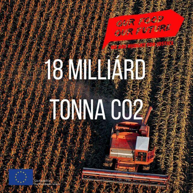 💨Az élelmiszer-ellátási lánc🍅🥫 az üvegházhatású gázok kibocsátásának 34%-át adta globális szinten 2015-ben. Magyarországon megegyezik ez a szám, a magyar élelmiszeripar kibocsátása 22 és fél milliárd tonna CO2 volt 2015-ben, az össze kibocsátás 34%-a. 🧮Az adatok az EDGAR-FOOD új, nyilvános adatbázisból származnak, amelyet Francesco Tubiello, a FAO vezető statisztikai és éghajlatváltozási szakembere, illetve és az Európai Bizottság Közös Kutatóközpontjának (JRC) munkatársai készítettek.   🥕Az élelmiszer-ellátási lánc kibocsátásának 💨39%-át a közvetlenül a termeléshez köthető tevékenységek – beleérve például a műtrágya használatát is – adják. 💨38% a földhasználat, valamint a hozzá kapcsolódó tényezők részaránya. 💨29%-áért pedig az elosztás felelős, és ez a részarány folyamatosan nő.   🐄Az élelmiszer-ellátási láncok okozta üvegházgáz-kibocsátások körülbelül 35%-a a metánkibocsátás (CH4) számlájára írható.  #OurFoodOurFuture #GoEAThical #OFOF #DEARProgramme #méltányoskereskedelem #fairtrade #klímabarátkonyha #klímabaráttányér  #foodie #táplálkozás #tudatoséletmód #egészség  #egészségeséletmód #életmód #életmódváltás  #mutimiteszel #mik_gasztro_fitt #mutimiteszel_fitt #veggies #gasztro #zöldség #mutimiteszel_mentes  #meltanyoskereskedelem #hulladekmentes #fenntartható #környezetvédelem #fenntarthatóság