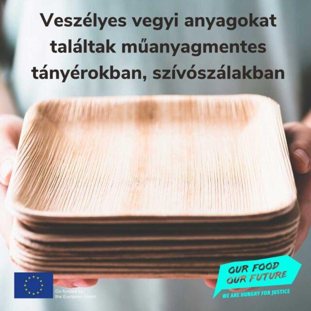 """🌿Idén július 1-től számos egyszer használatos műanyag terméket betiltanak az EU-ban, így Magyarországon is. A klímaválság elleni küzdelem részeként elengedhetetlen volt ennek a döntésnek a meghozatala, ugyanakkor újabb megoldandó problémákat vetett fel. Európai fogysztóvédelmi szervezetek a műanyag szívószálak, evőeszközök és tányérok zöld alternatíváit vizsgálták négy országban és kiderült: az egyre népszerűbb, növényi rostból készült tálak, papír szívószálak, pálmalevélből készített tányérok aggodalomra okot adó vegyi anyagokat tartalmaznak.  🔗A vizsgálat eredményeit elolvashatod legújabb cikkünkben - link a bióban! 🌿A mintában vizsgált termékeknek összesen 53%-a tartalmazott egy vagy több aggodalomra okot adó vegyi anyagot az ajánlottnál magasabb arányban, míg további 21% tartalmazott ilyen anyagot a határértékhez közeli mértékben. 🌿A teszt során az is kiderült, hogy sok termék megalapozatlan zöld állításokkal vezette félre a vásárlókat. 🌿""""A zöld címkéknek – """"természetes"""", """"biológiailag lebomló"""", vagy """"komposztálható"""" – semmi keresnivalójuk az olyan egyszer használatos étkészleteken, amelyek perzisztens vegyi anyagokat tartalmaznak"""" - mondta Monique Goyens, az Európai Fogyasztók Szervezete (BEUC) főigazgatója. 🔎Az alábbi termékeket vizsgálták: 23, növényi rostból, az esetek többségében kipréselt cukornádból készült tálka és tányér; 18 papírszívószál; 16 pálmalevélből készült tálka és tányér. ❌Fluortartalmú vegyületek (PFAS-ek): rák, az intelligencia csökkenése, és más, súlyos egészségügyi károsodás hozható velük összefüggésbe. ❌Kloropropanolok: a papírcsomagolás gyártása során szabadulnak fel, és rákkeltő hatásuk van. ❌Növényvédőszerek: a növényi alapú, élelmiszerrel érintkező termékekben mutathatóak ki. Bizonyos növényvédő szereknek való kitettség többek között rákot, születési rendellenességet és endokrin károsodást okozhat. #fogyasztóvédelem #tudatosvásárló #OurFoodOurFuture #GoEAThical #OFOF #DEARProgramme #műanyagmentes #fenntarthatóság"""